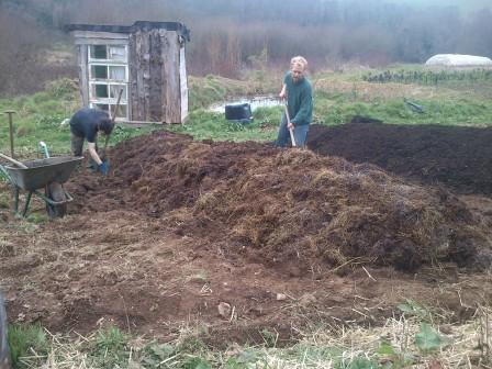 Mise en place des buttes de permaculture 4